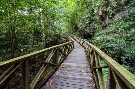Wooden walkbridge in Niah National Park, Malaysia Borneo Lizenzfreie Bilder