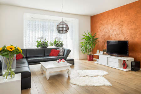 dutch: Modern European style living room