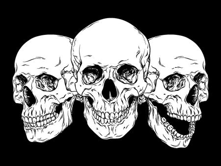 anatomically: Hand drawn line art anatomically correct human skulls set isolated vector illustration