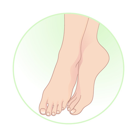 feet care: Beautiful female feet. Body care icon design vector illustration
