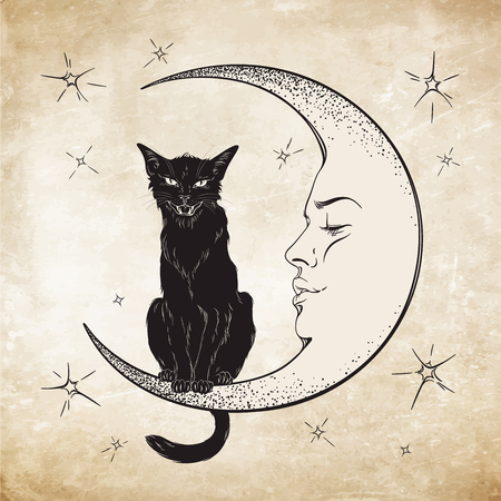 Black cat sitting on the moon. Wiccan familiar spirit vector illustration