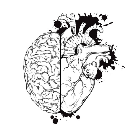 Hand drawn line art human brain and heart halfs. Grunge sketch tattoo design isolated on white background vector illustration. Logic and emotion priority concept.