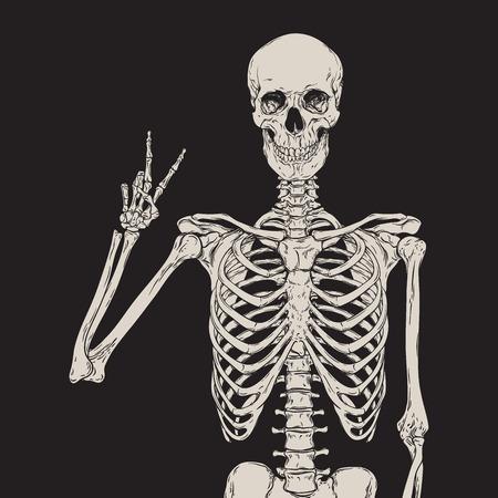 人間の骨格を黒の背景ベクトル図で孤立したポーズ