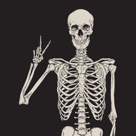 Human skeleton posing isolated over black background vector illustration Zdjęcie Seryjne - 62541050