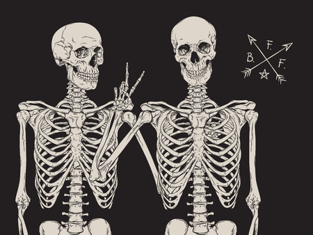 Human skeletons best friends posing isolated over black background vector illustration Stock Illustratie