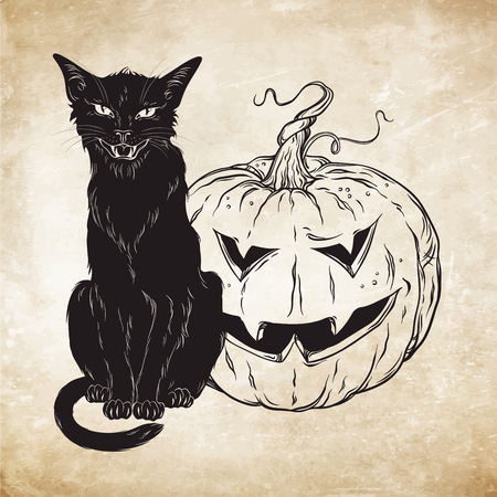 wiccan: Black cat sitting with halloween pumpkin over old grunge paper background vector illustration. Wiccan card design. Witches familiar spirit animal