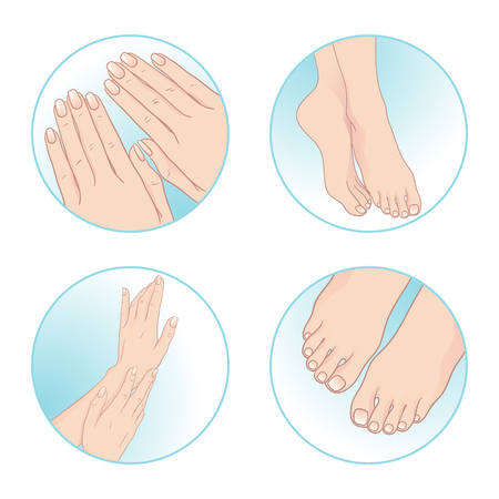 pedicure set: Beautiful female hands and feet, manicure and pedicure. Body care set design vector