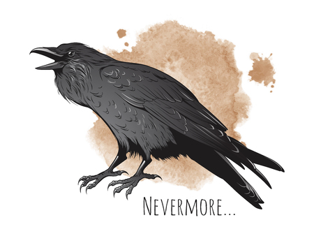 Hand drawn raven on sepia background vector illustration.