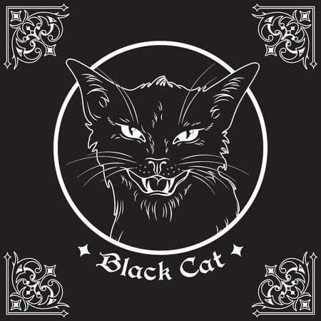 Hand drawn black cat head in frame over black background and ornate gothic design elements. Wiccan familiar spirit, pagan witchcraft theme vector illustration