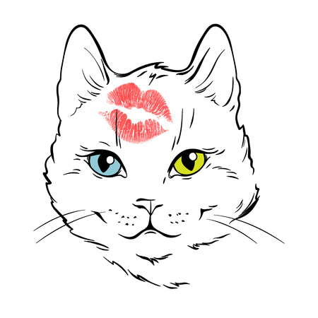 Beautiful white cat face with different eyes color kissed in forehead.