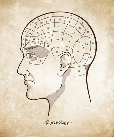 Phrenology retro pseudoscience poster or print design over grunge paper background hand drawn vector illustration. Ilustração