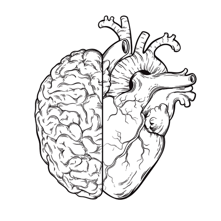 Hand drawn line art human brain and heart halfs - Logic and emotion priority concept. Print or tattoo design isolated on white background vector illustration