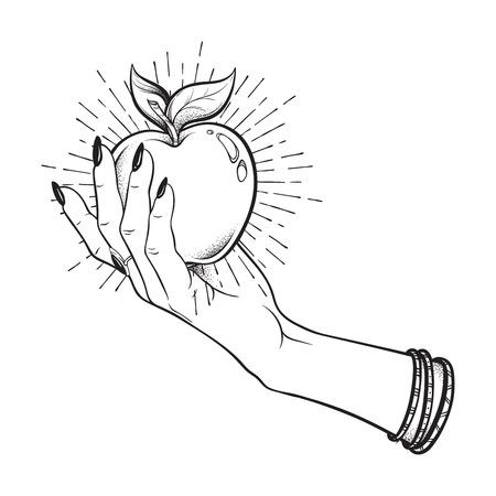여성의 손에 애플 격리 손으로 그린 라인 아트와 도트 작업 벡터 일러스트 레이 션. Boho 스티커, 프린트 또는 블랙 워크 플래시 문신 디자인
