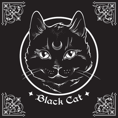 Hand drawn black cat with moon on his forehead in frame over black background and ornate gothic design elements. Wiccan familiar spirit, pagan witchcraft theme vector illustration 일러스트