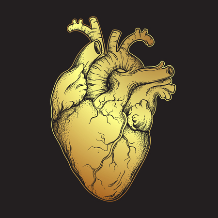 Menschliches Herz aus Gold. Anatomisch korrekte handgezeichnete Strichzeichnungen und Dotwork-Flash-Tattoo oder Druckdesign-Vektorillustration
