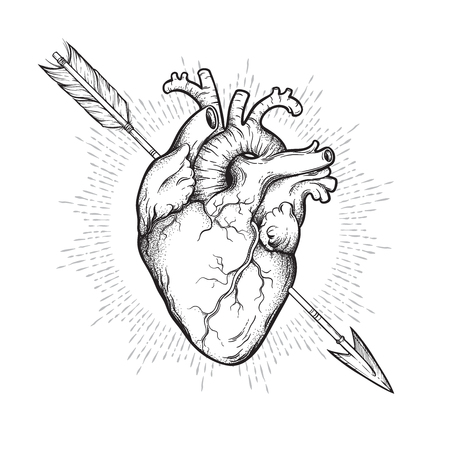 Human heart pierced with cherubs arrow hand drawn line art and dotwork. Flash tattoo or print design vector illustration