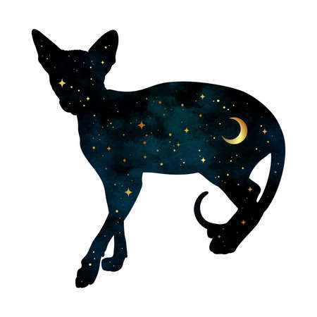 Silhouette of cat with crescent moon and stars isolated. Sticker, print or tattoo design vector illustration. Pagan totem, wiccan familiar spirit art. Иллюстрация