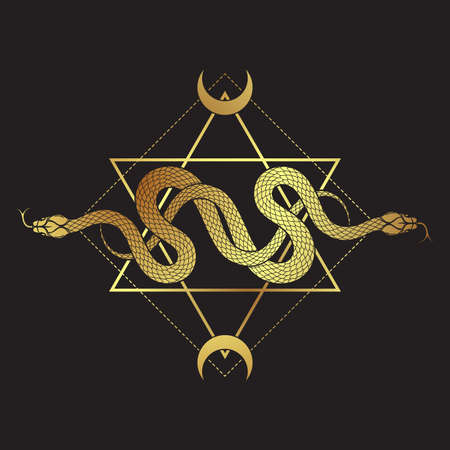Two gold serpents over the six pointed star line art boho chic tattoo, poster, tapestry or altar veil print design vector illustration