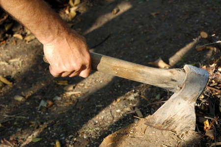 Hand with axe in stump