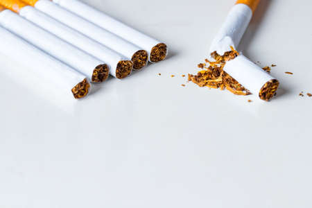 quiting: Bunch of cigarettes with one broken on white background. Quiting nicotine and tobacco addiction abstract concept. Copy space on the bottom. Stock Photo