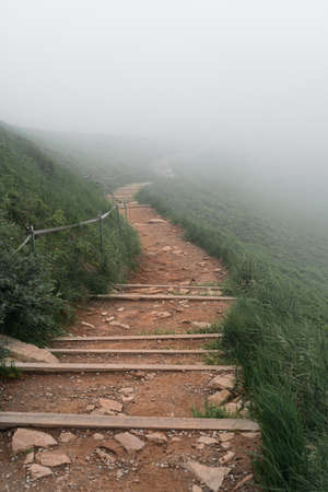Well maintained trail in a fog in Bieszczady Mountains, Poland. Vertical orientation.