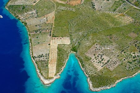 Aerial view of the vineyards fields in Croatia, Primosten Stock Photo