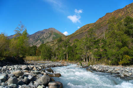 altay: Rushing river, Altay Stock Photo