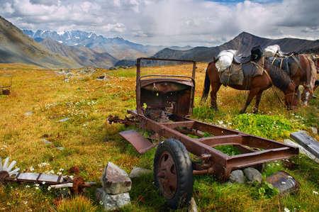 dismantling: old dismantling car and horses