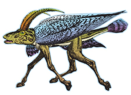 running camel: Fantasy Creature