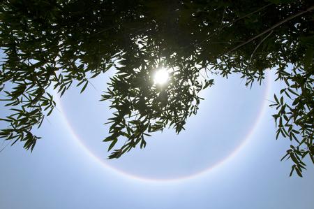 Sun halo phenomenon
