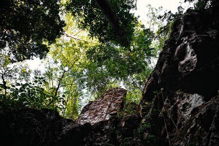 shear: Looking up at a shear steep cliff Stock Photo