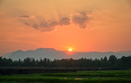 Sunset in mountain and rice field