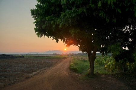 Tree silhouette and country road leading to sunset over the mountains : Thailand