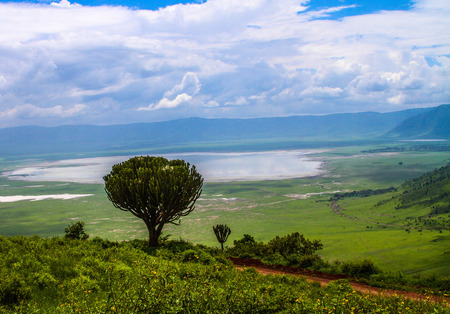 crater lake: overlooking a lake in Ngorongoro Crater