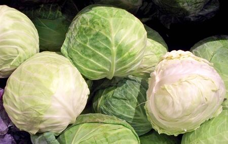 Cabbages on display in a market
