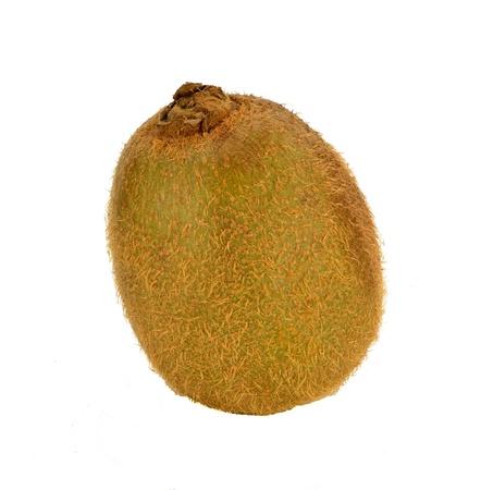 A kiwi fruit on a white background.