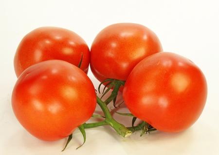 白い背景の上のつる 4 トマト。