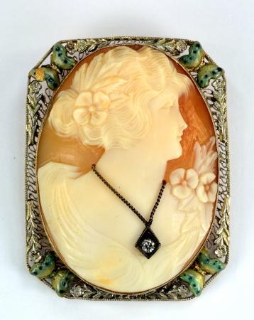20 世紀の半ばからジュエリー ピンのクローズ アップ。 写真素材