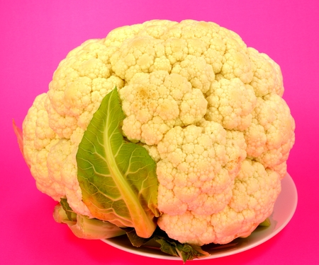 Head of Cauliflower on a red background. Stock Photo