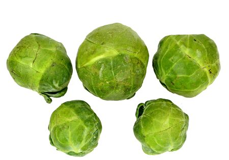 brussel: Five Brussel sprouts on a white background.