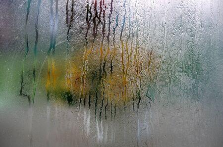 霜覆われて窓から見られた花のボウル。 写真素材