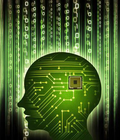data processing: human brain