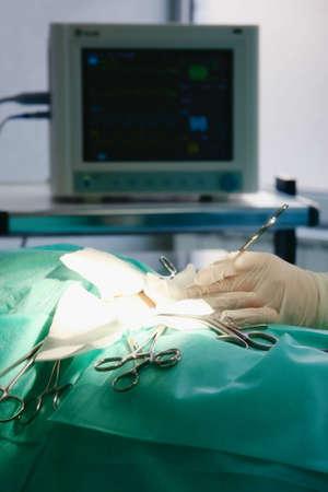 sanction: Operation