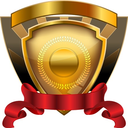 A heraldic shield award  illustration with blank fields for entering custom text or graphics. Vector