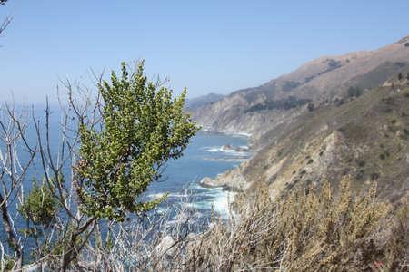 california coast: California Coast California Beach Stock Photo