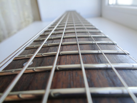 fret: Electric Guitar Fretboard perspective