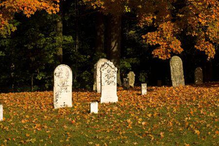 Graveyard full of Autumn leaves