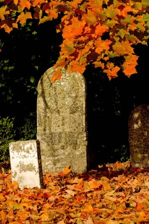 Graveyard with focus on middle tombstone. Fall leaves around it.