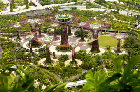 marina bay: Themed Botanical Park in Singapore