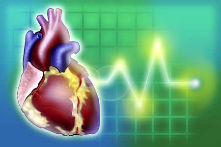 心拍数のモニター